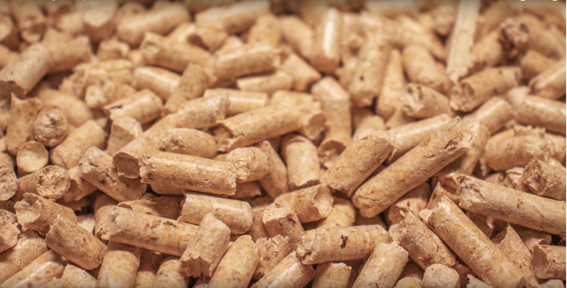 medium wood pellets